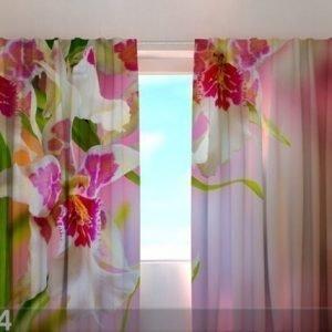 Wellmira Puolipimentävä Verho Mottle Orchids 1