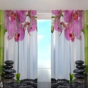 Wellmira Puolipimentävä Verho Orchids And Bamboo 240x220 Cm