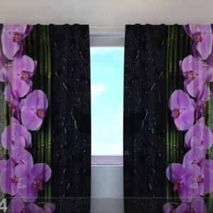 Wellmira Puolipimentävä Verho Orchids On Black 240x220 Cm