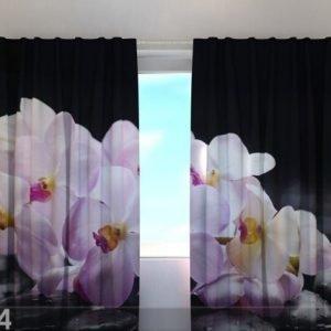 Wellmira Puolipimentävä Verho Orchids On Stone 240x220 Cm