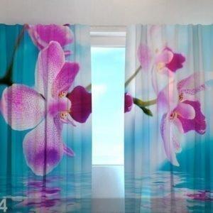 Wellmira Puolipimentävä Verho Skyblue Orchids 240220
