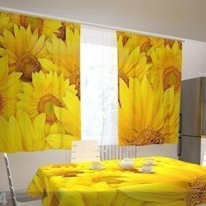Wellmira Puolipimentävä Verho Sunflowers In The Kitchen 200x120 Cm
