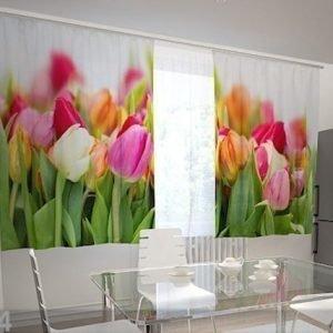 Wellmira Puolipimentävä Verho Tulips In The Kitchen 200x120 Cm