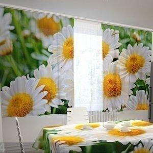 Wellmira Puolipimentävä Verho White Camoniles For The Kitchen 200x120 Cm