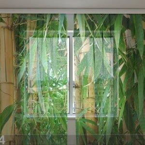 Wellmira Sifonki-Kuvaverho Bamboo Forest 240x220 Cm