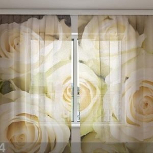 Wellmira Sifonki-Kuvaverho Champagne Roses 240x220 Cm