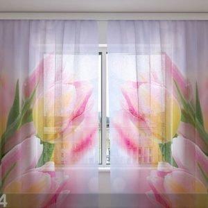 Wellmira Sifonki-Kuvaverho First Tulips 240x220 Cm