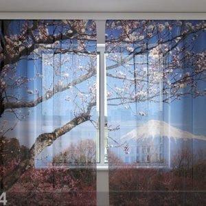 Wellmira Sifonki-Kuvaverho Fuji 240x220 Cm