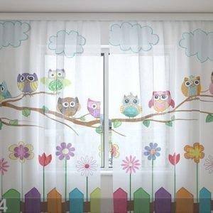 Wellmira Sifonki-Kuvaverho Funny Owl 240x220 Cm