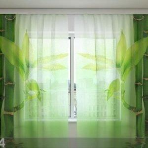 Wellmira Sifonki-Kuvaverho Green Bamboo 240x220 Cm