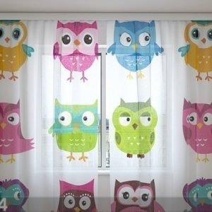 Wellmira Sifonki-Kuvaverho Lovely Owl 240x220 Cm