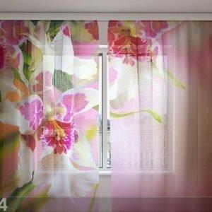 Wellmira Sifonki-Kuvaverho Mottle Orchids 240x220 Cm
