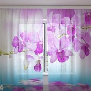 Wellmira Sifonki-Kuvaverho Orchid Vivian 240x220 Cm