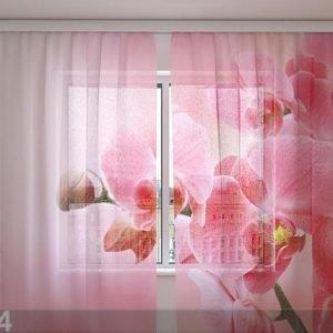 Wellmira Sifonki-Kuvaverho Pink Orchid 240x220 Cm
