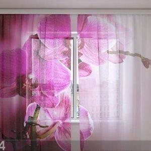 Wellmira Sifonki-Kuvaverho Purple Orchids 240x220 Cm