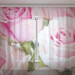 Wellmira Sifonki-Kuvaverho Royal Roses 240x220 Cm