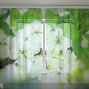 Wellmira Sifonki-Kuvaverho Spring Flowers 240x220 Cm
