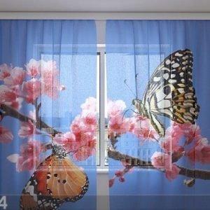Wellmira Sifonki-Kuvaverho Two Butterflies 240x220 Cm